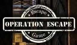 L'organisation d'une animation type escape game ou mystery game |